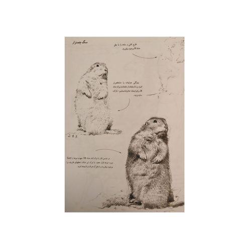 طراحی از حیوانات
