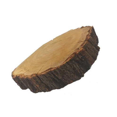 تنه درخت بزرگ گرد