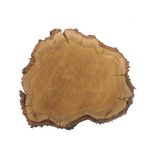 تنه درخت متوسط گرد